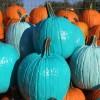 Thumbnail image for Une citrouille turquoise pour l'Halloween