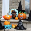 Thumbnail image for Une citrouille turquoise pour l'Halloween – prise deux